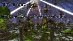 Guild Wars 2 World